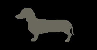 チワワ・ダックス(9kg未満) ミニチュアピンシャー